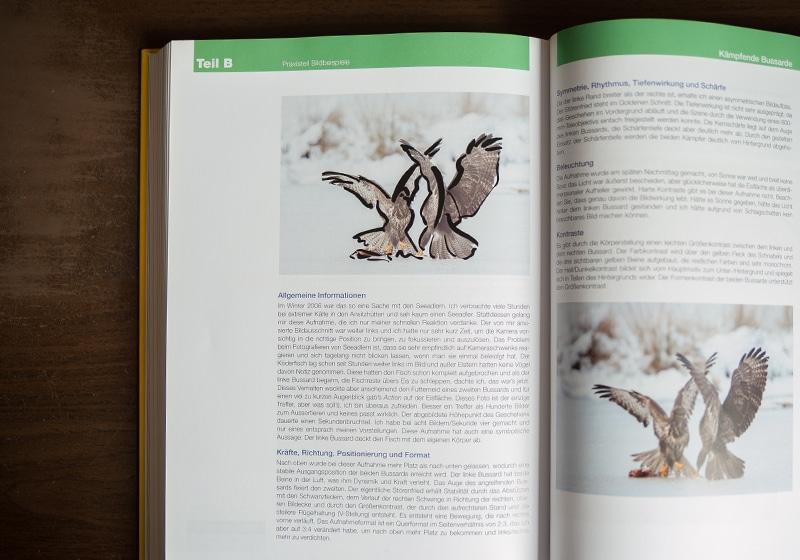 Buch über Fotografie - Bildkomposition und Bildwirkung